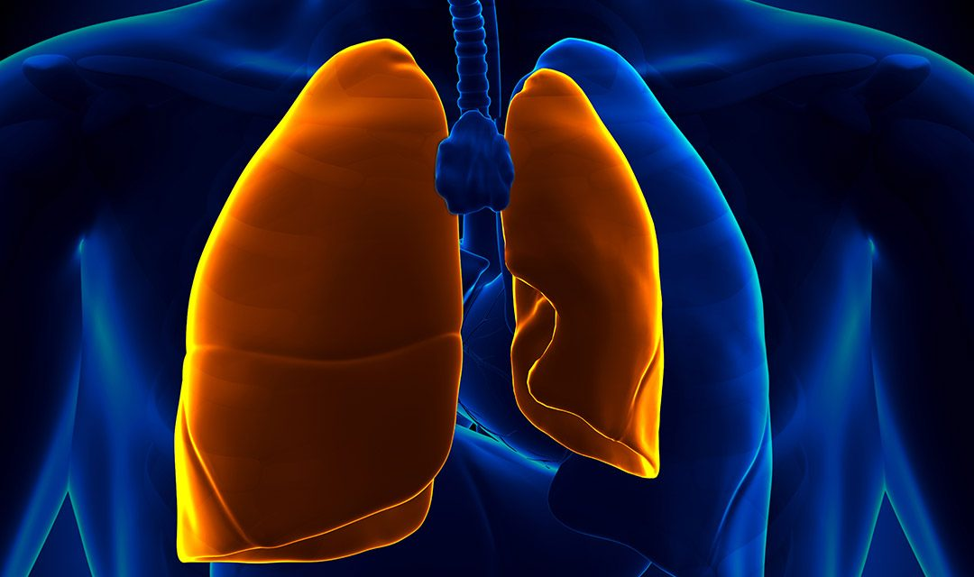 Een kaplong of Pneumothorax
